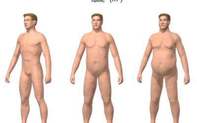 L'obésité peut-elle réduire l'espérance de vie d'un être humain ?