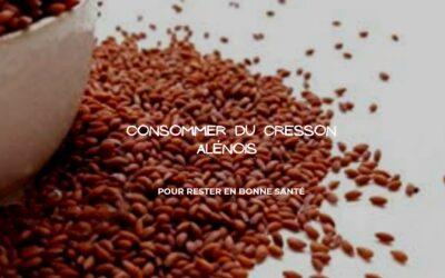 Consommer du cresson alénois pour une santé de fer