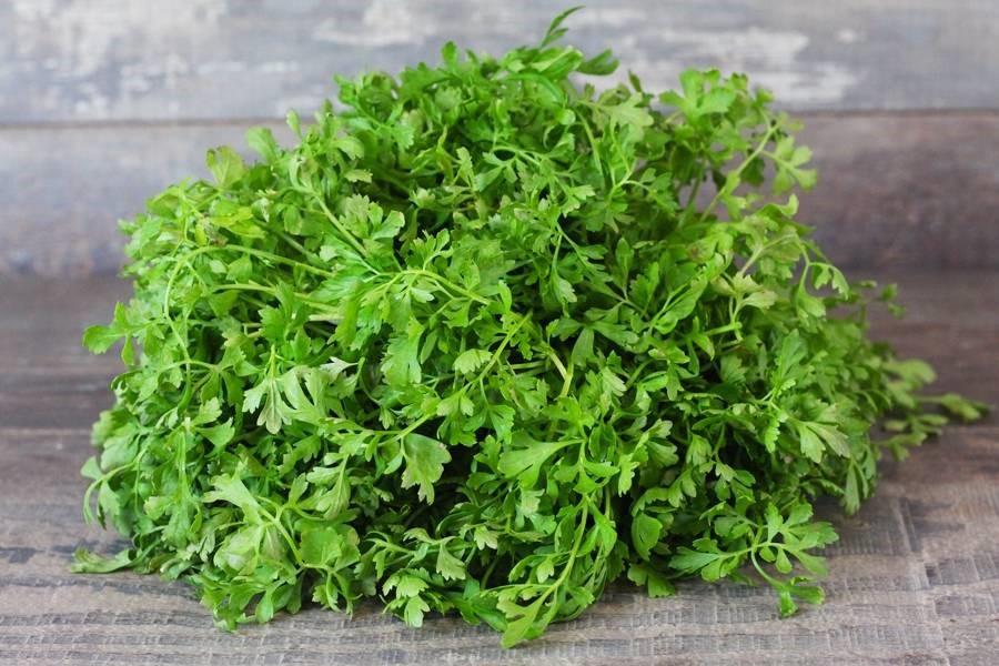 plante cresson