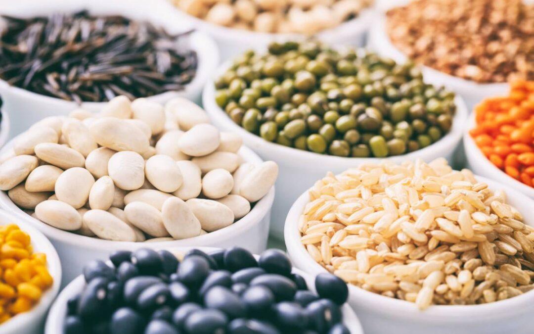 aliment riche en proteines